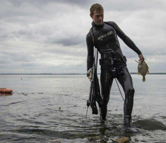 Ny dykkerattraktion i Nordhavn (foto: Camilla Hylleberg, Aquamind)