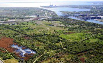 Naturpark Amager (foto: Naturstyrelsen)