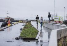 Diget på vestsiden af Gl. Havn i Fredericia