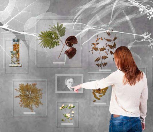 Statens Naturhistoriske Museum – nye udstillinger i 2022 (Illustration: Tinker Imagineers)