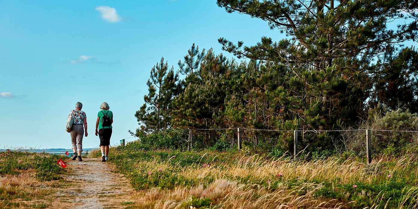 Bevæg dig for livet – naturewalk (foto: Bo Nymann / DGI Media)