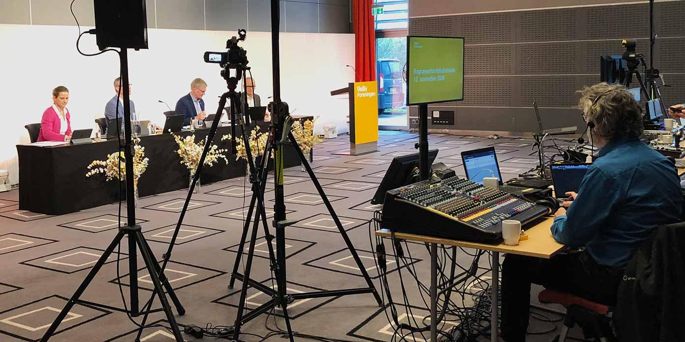 Online repræsentantskabsmøde (foto: Velliv Foreningen)